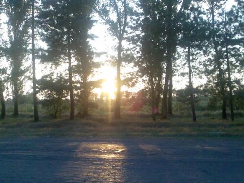 ქარელის მიდამოები, 8 აგვისტოს საღამო