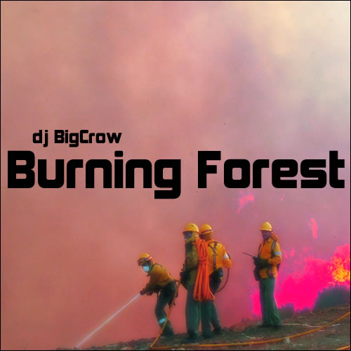 BigCrow - burning forest