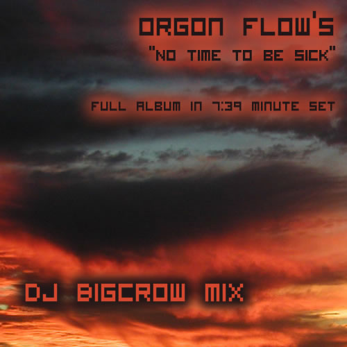 BigCrow - No time to be Sick